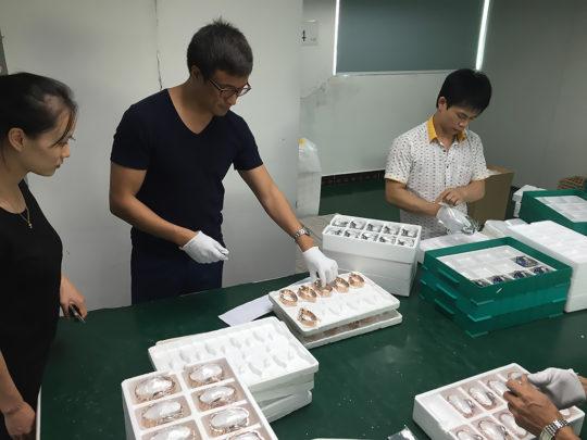 род вечнозеленых печать фото продукции в китае ничего держат, объясняет